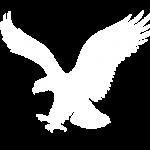 Sasvári fészek